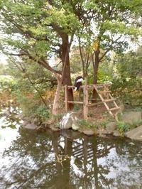 上野動物園。 - 馬耳Tong Poo