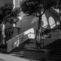 不思議な影を宿す階段 - Silver Oblivion