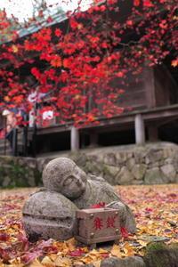 篠山大國寺 - とりあえず撮ってみました