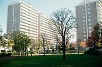 芝生と隣のマンションと倅の技能コンテスト全国大会 - 照片画廊