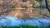三渓園 - 緑と手仕事 ワンダーライフ