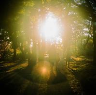 ★秋光の中へ - 一写入魂