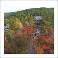 南禅寺へ紅葉を楽しみに - * cinqante - サンカント *