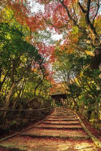 三滝寺の紅葉 2018 - Omoブログ