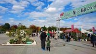 大手前公園へ出店&大温室 - 手柄山温室植物園ブログ 『山の上から花だより』