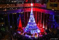 夜の丸の内:クリスマスツリー - Photocards with love