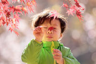 桜色と秋色の彩りを「城峯公園」 - Full of LIFE