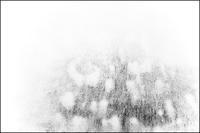 落書きをする様に写した写真。-6- - 記録と記憶。