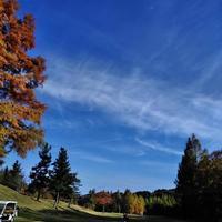ゴルフ青空紅葉幸せ - 連続スリーパット 2