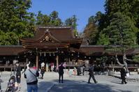 多賀大社の紅葉 - nyan5 blog