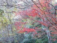 紅葉山 - いつかみたソラ