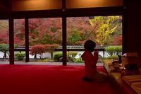 正歴寺の紅葉を眺める - 峰さんの山あるき