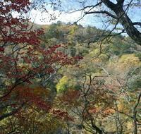 塩原の紅葉 - 写真巡礼「日本の風景」