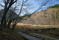 秋の終わり - 写真巡礼「日本の風景」