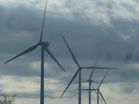 風車。 - 平野部屋