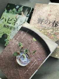 図書館で本を借り従姉宅へ行く - 島暮らしのケセラセラ