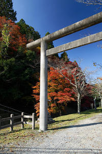 2018京都の紅葉・日吉多冶神社 - デジタルな鍛冶屋の写真歩記