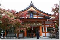 カメラ講座・秋の色を撮る - Have a nice day!