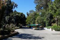 September 2018 Los Angeles Zoo 2 - 墨色の鳥籠