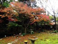 菩提寺の紅葉 - 風にのって・・・