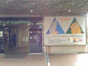 ハダカデバネズミ。~上野動物園~ - 馬耳Tong Poo