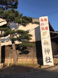 藤森神社参拝 - 猫と、旅する猫用カメラ