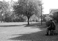 少年野球を見る老人と時間のつぶし方 - 照片画廊