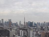 ウェスティンホテル東京お部屋の紹介 - しあわせオレンジ