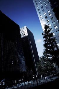 Tokyo Snap 30神田橋 - 花は桜木、