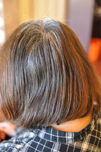 「白髪染め!!オ・ト・ナのダークブラウン」 - 観音寺市 美容室 accha