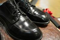 コードヴァン週間 - シューケアマイスター靴磨き工房 三越日本橋本店