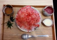 和菓子、かき氷 - お昼ごはんはパフェ (お昼ごはんはモーニング?)