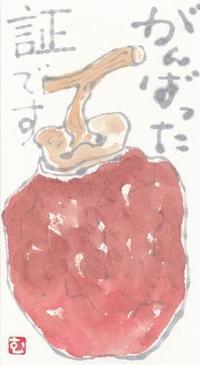 干し柿「がんばった証です」 - ムッチャンの絵手紙日記