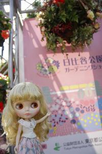 ミンティーちゃんと日比谷公園ガーデニングショーに行ってきました - T's Photo Diary3(Grass Field*)