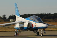 岐阜基地航空祭 - 鳥撮りDAIRY