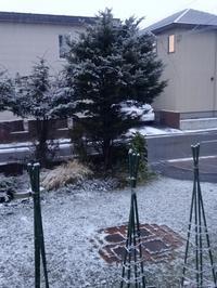 とうとう初雪 - marikomama 気まぐれ日記