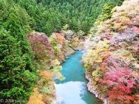Mukashi-michi trail in Okutama - Hike in and around Tokyo