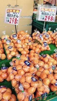 亀沢 マルシェの激安果物 一袋298円 - 設計事務所 arkilab