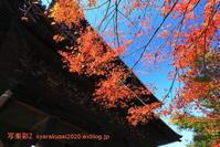 南禅寺に行く-3 - 写楽彩2