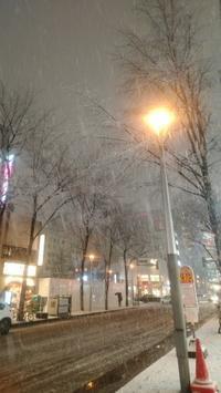 冬到来! - きたのさと動物病院 | 札幌白石区・東区 | 一般診療・皮膚科・耳科