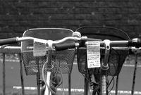 雪に埋まる前に放置自転車を無くしたい - 照片画廊