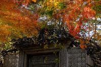 富士五湖巡り#6 久保田一竹美術館 - 長い木の橋