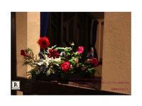 様々な花器で活けていただきました!赤の競演🎶✨ - Bouquets_ryoko