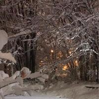 雪景色 - Bleu Belle Fleur☆ブルーベルフルール