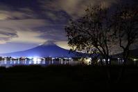 30年11月の富士(13)柿の木と富士 - 富士への散歩道 ~撮影記~