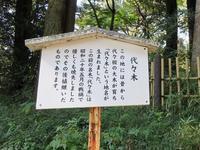 「代々木」の由来となった樅の木  (原宿散歩⑤) - 気ままに江戸♪  散歩・味・読書の記録