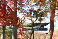 南禅寺に行く-7 - 写楽彩2