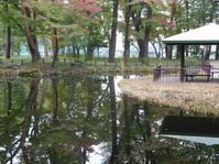 「塚山遺跡公園付近」歩く#7 - 古稀からの日々