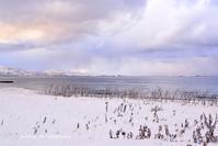 いきなり雪景色 - 礼文島★ハナとわたし