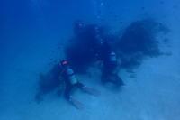18.11.23いい兄さんの日 - 沖縄本島 島んちゅガイドの『ダイビング日誌』